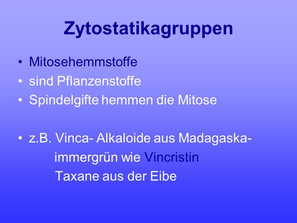 Zytostatikagruppen Mitosehemmstoffe sind Pflanzenstoffe