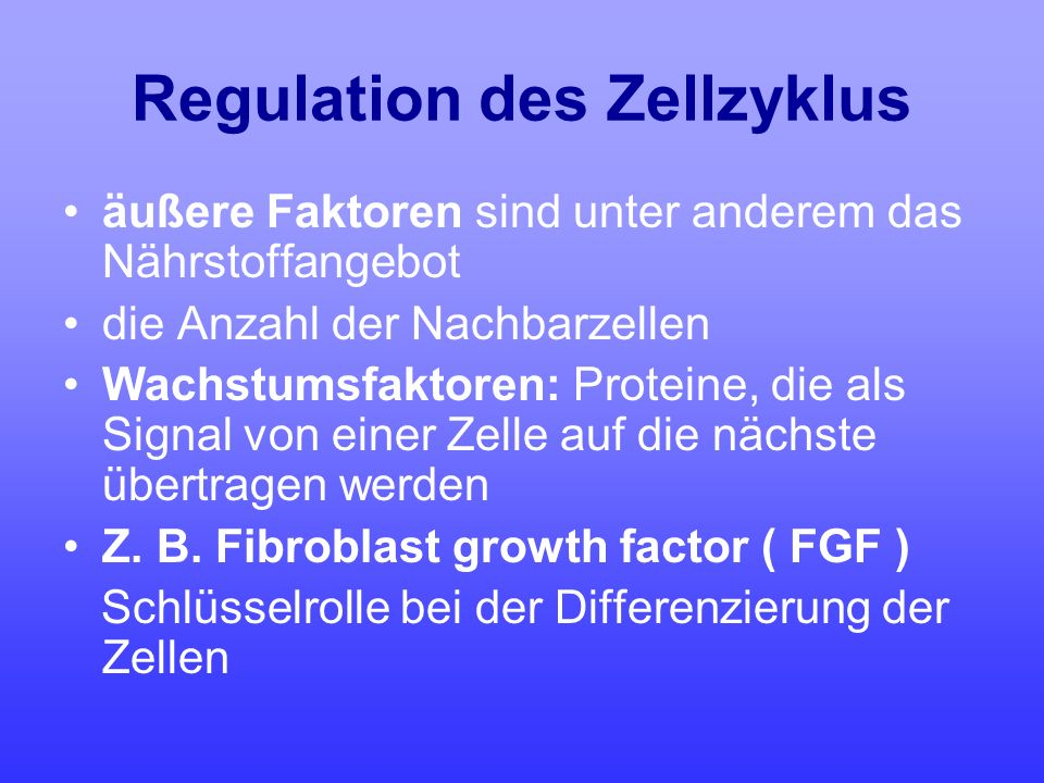 Regulation des Zellzyklus