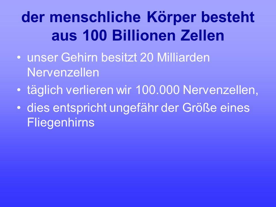 der menschliche Körper besteht aus 100 Billionen Zellen