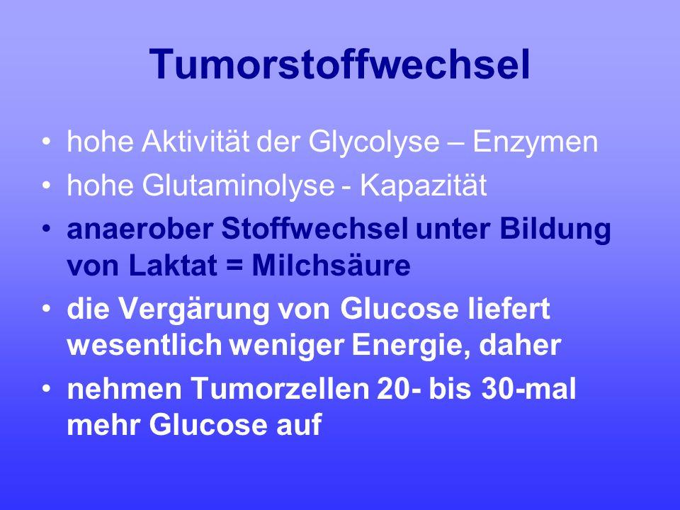 Tumorstoffwechsel hohe Aktivität der Glycolyse – Enzymen