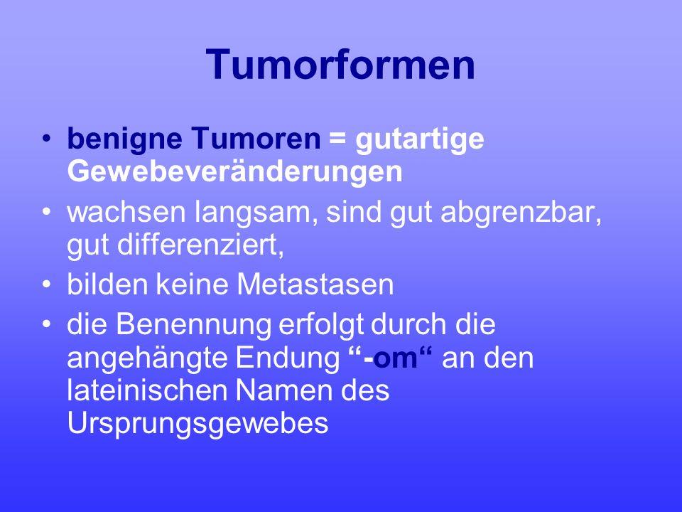 Tumorformen benigne Tumoren = gutartige Gewebeveränderungen