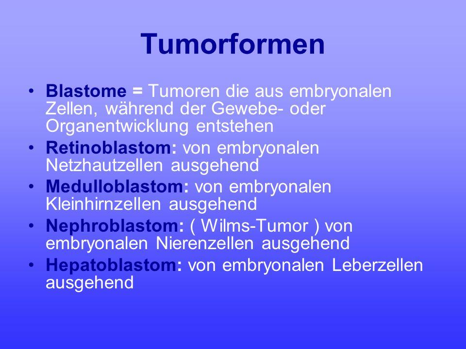 Tumorformen Blastome = Tumoren die aus embryonalen Zellen, während der Gewebe- oder Organentwicklung entstehen.