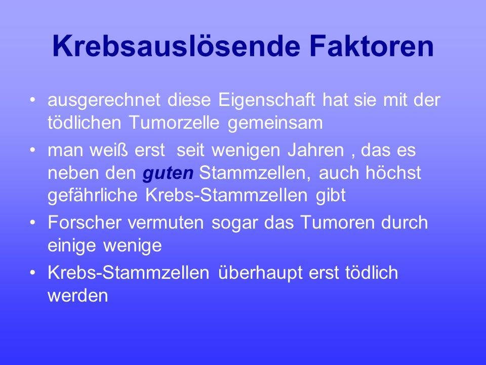 Krebsauslösende Faktoren