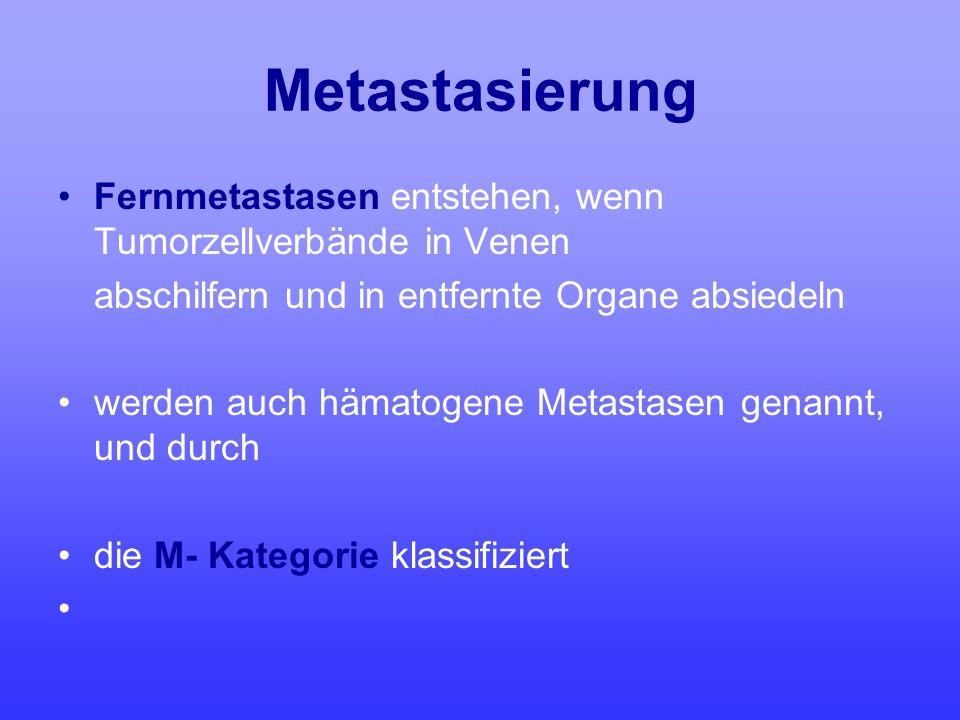 Metastasierung Fernmetastasen entstehen, wenn Tumorzellverbände in Venen. abschilfern und in entfernte Organe absiedeln.