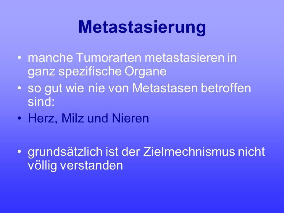 Metastasierung manche Tumorarten metastasieren in ganz spezifische Organe. so gut wie nie von Metastasen betroffen sind:
