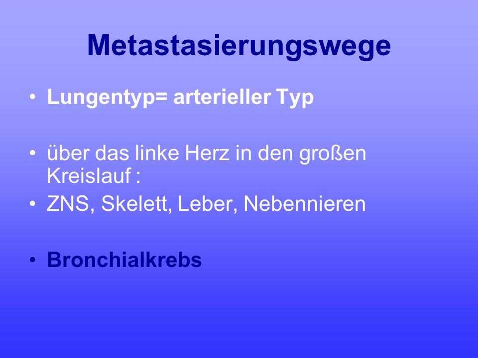Metastasierungswege Lungentyp= arterieller Typ