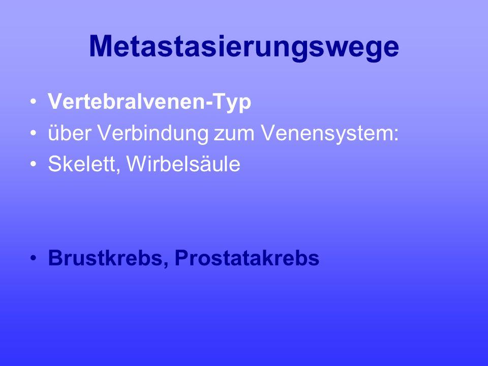 Metastasierungswege Vertebralvenen-Typ