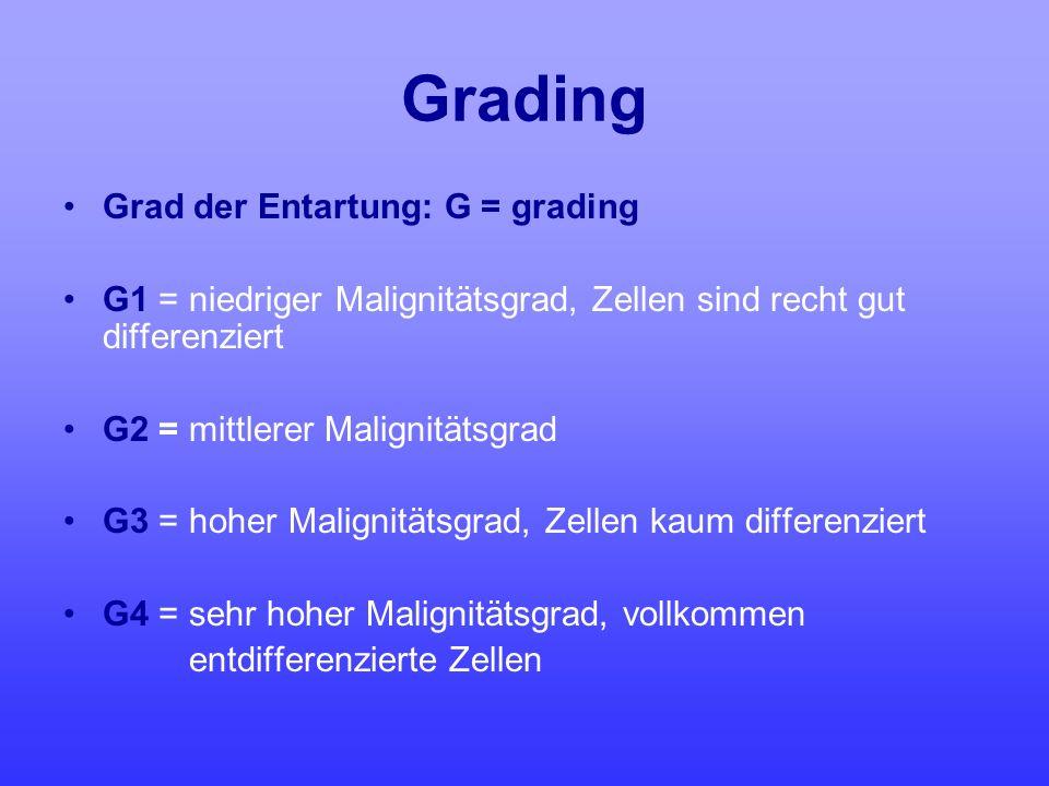 Grading Grad der Entartung: G = grading