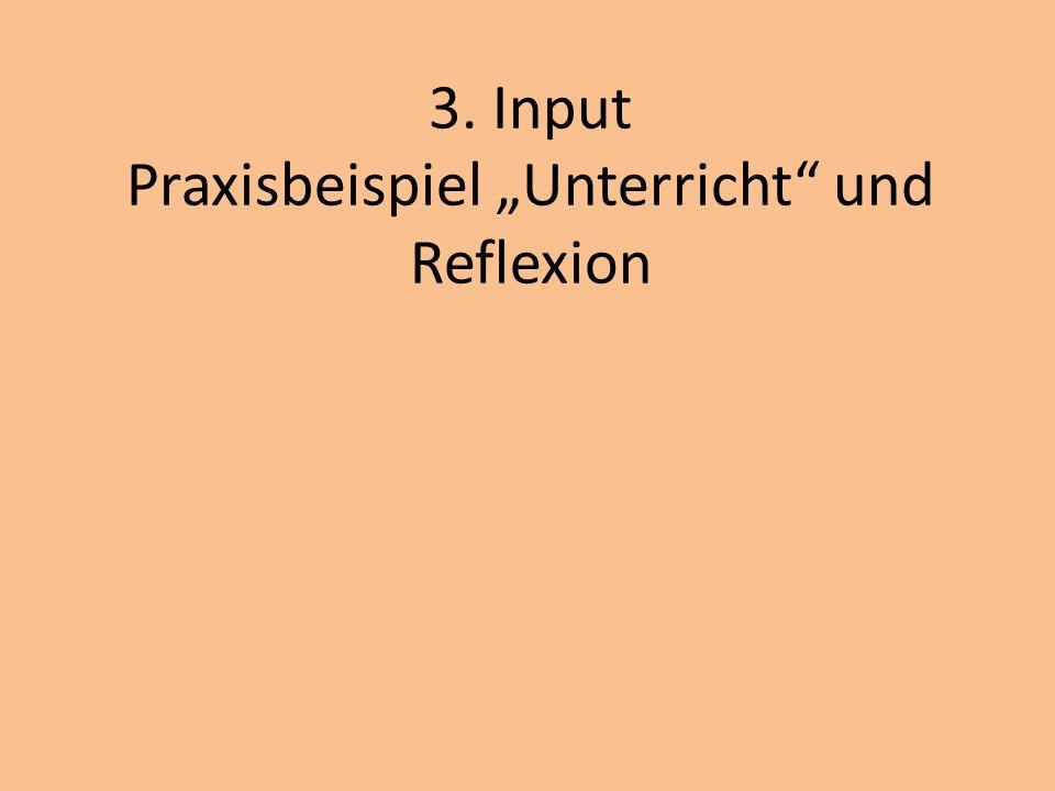 """3. Input Praxisbeispiel """"Unterricht und Reflexion"""