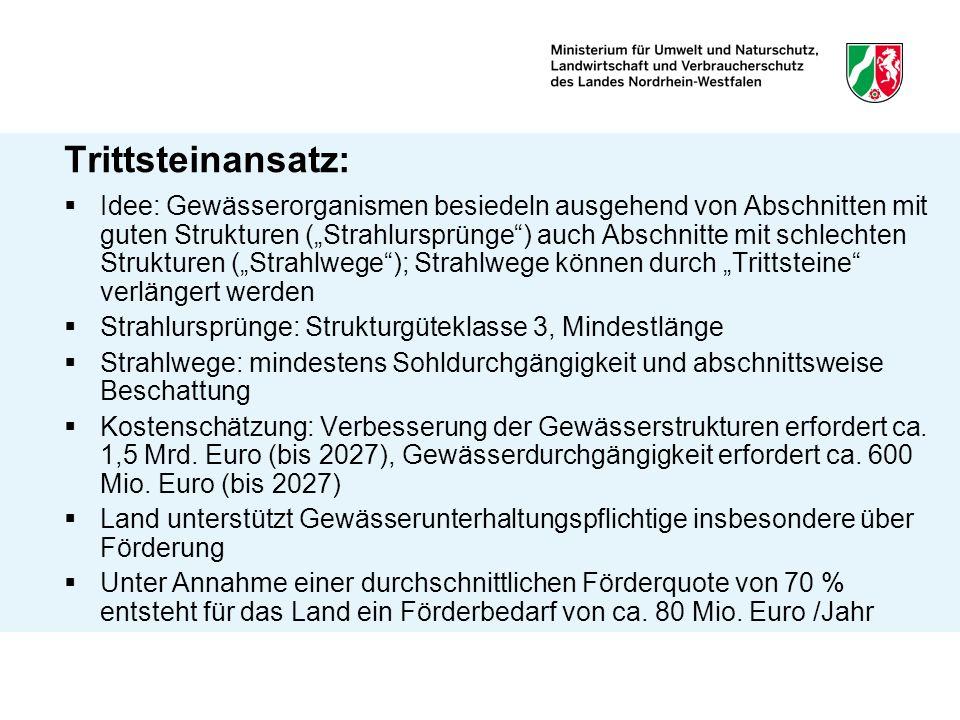 Trittsteinansatz: