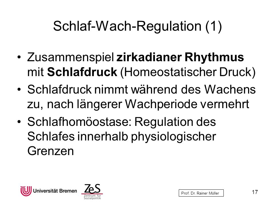 Schlaf-Wach-Regulation (1)