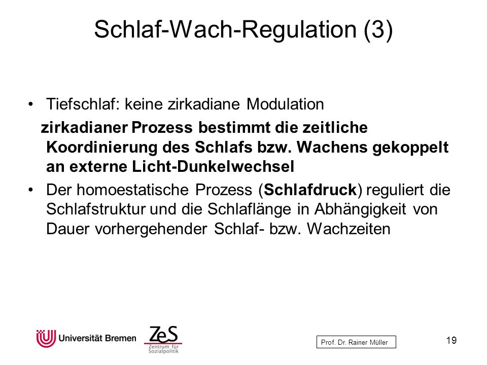 Schlaf-Wach-Regulation (3)