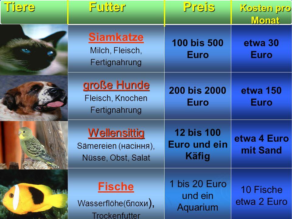 1 bis 20 Euro und ein Aquarium