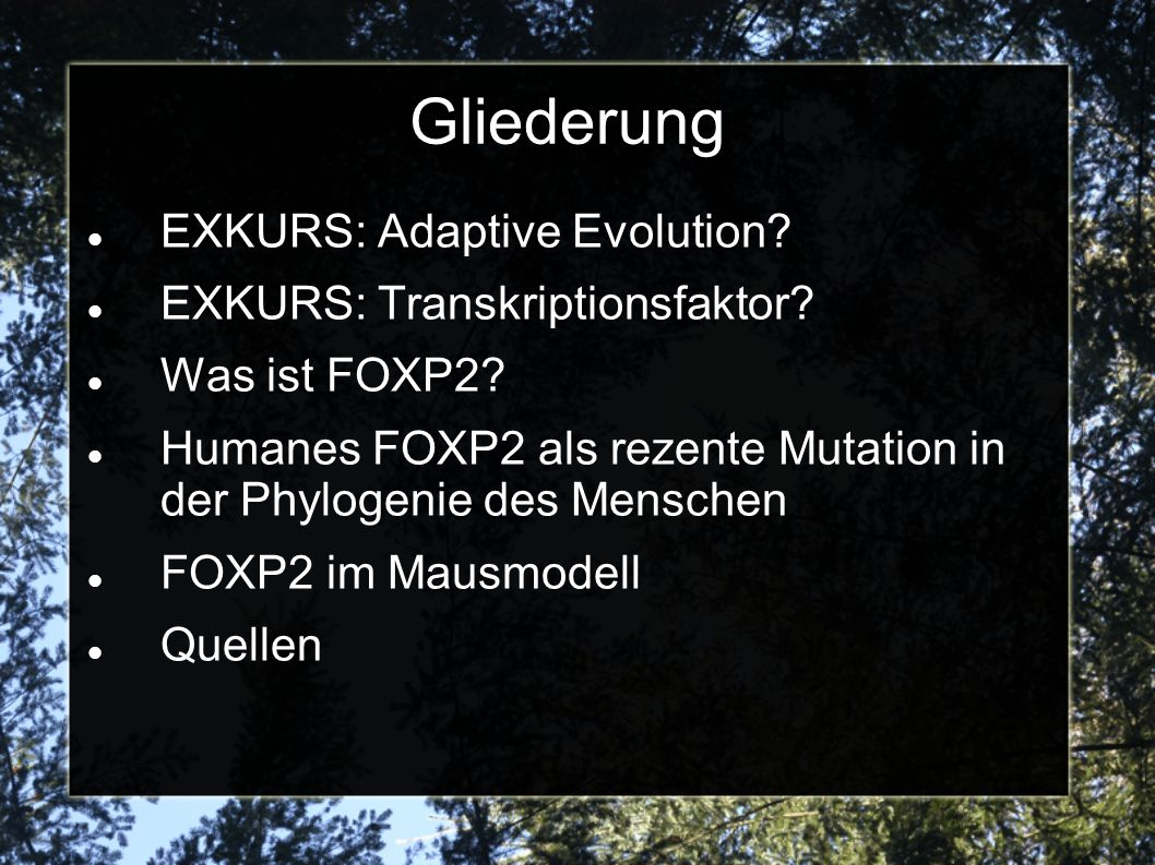 Gliederung EXKURS: Adaptive Evolution EXKURS: Transkriptionsfaktor