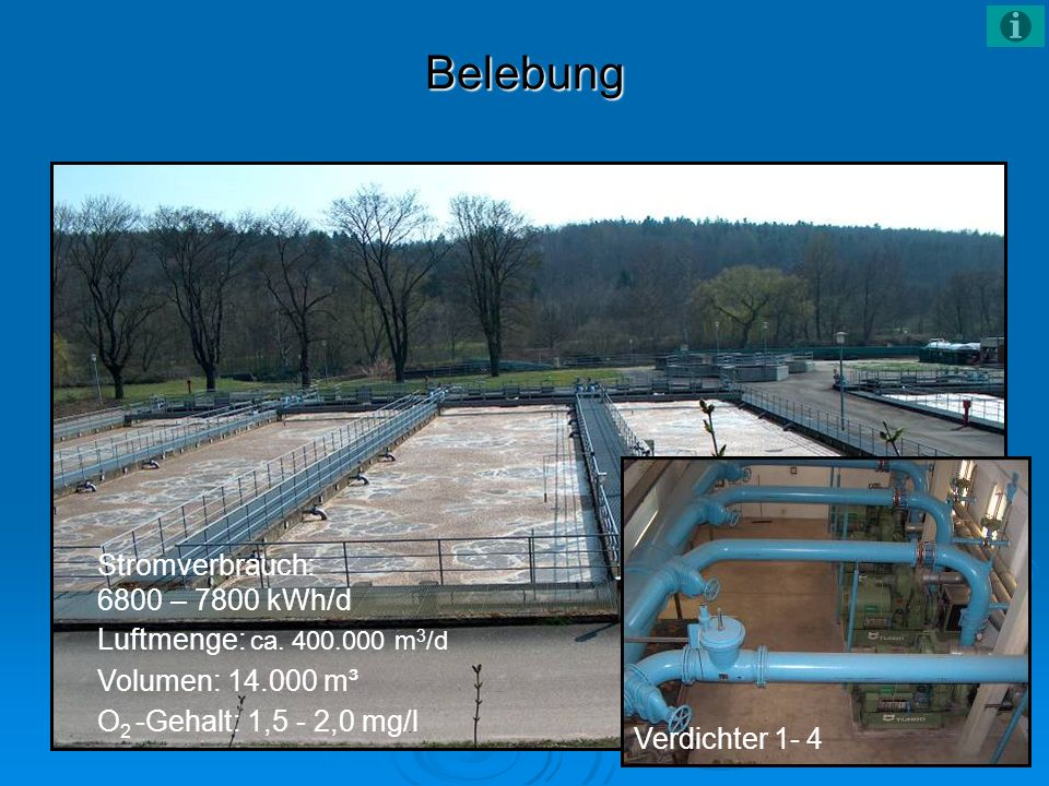 Belebung Stromverbrauch: 6800 – 7800 kWh/d Luftmenge: ca. 400.000 m3/d