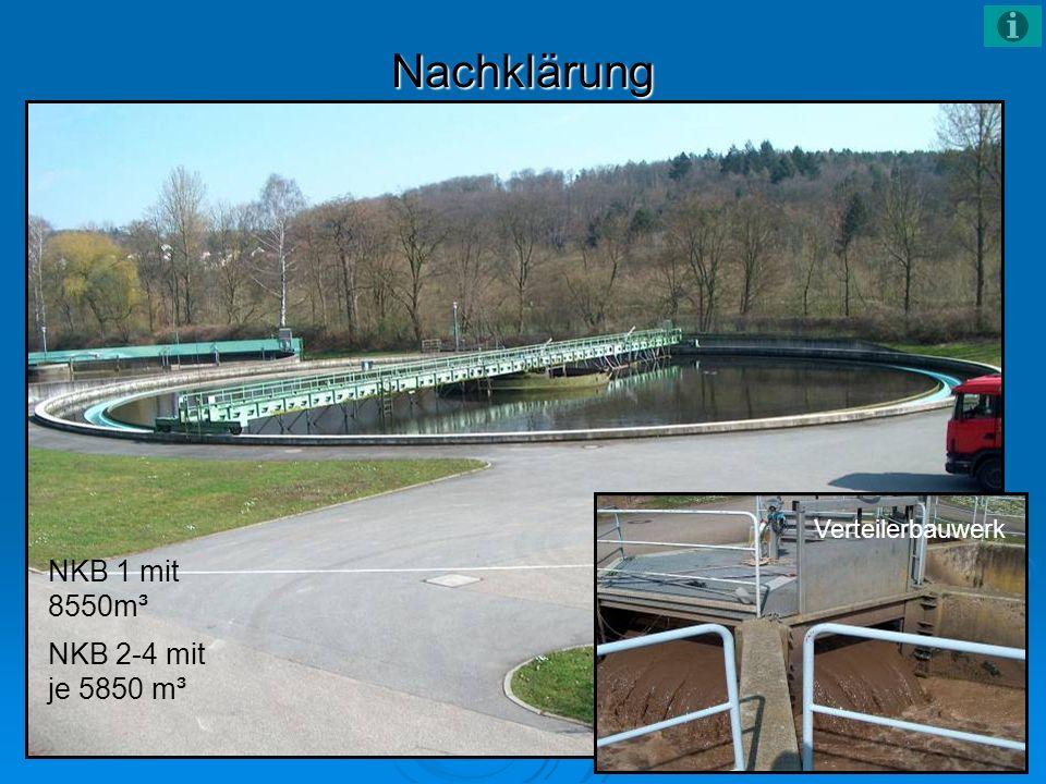 Nachklärung Verteilerbauwerk NKB 1 mit 8550m³ NKB 2-4 mit je 5850 m³