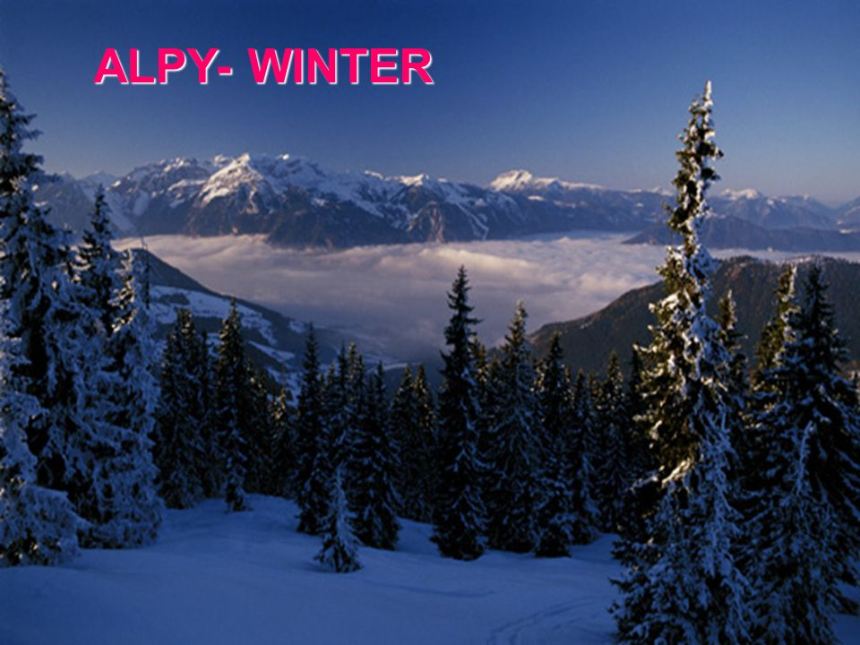 ALPY- WINTER