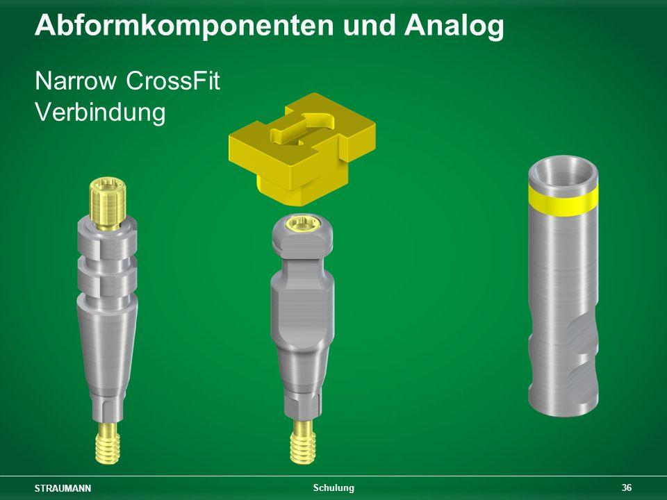 Abformkomponenten und Analog