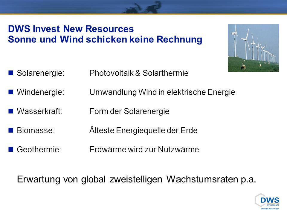 DWS Invest New Resources Branchen- und Länderallokation