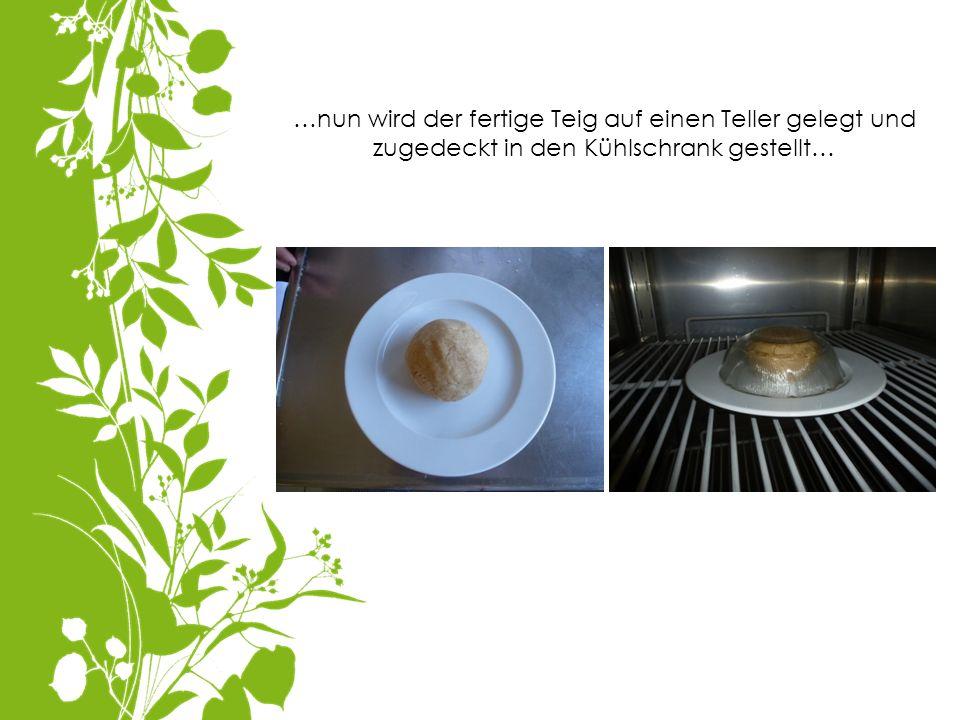 …nun wird der fertige Teig auf einen Teller gelegt und zugedeckt in den Kühlschrank gestellt…