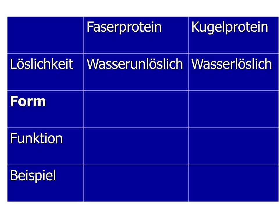 Faserprotein Kugelprotein Löslichkeit Wasserunlöslich Wasserlöslich Form Funktion Beispiel