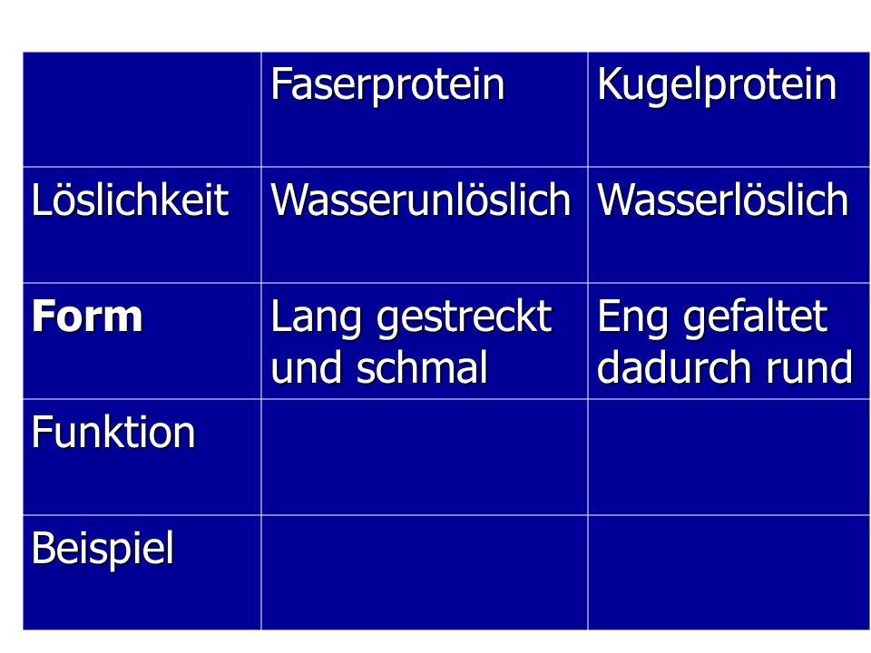 Faserprotein Kugelprotein. Löslichkeit. Wasserunlöslich. Wasserlöslich. Form. Lang gestreckt und schmal.
