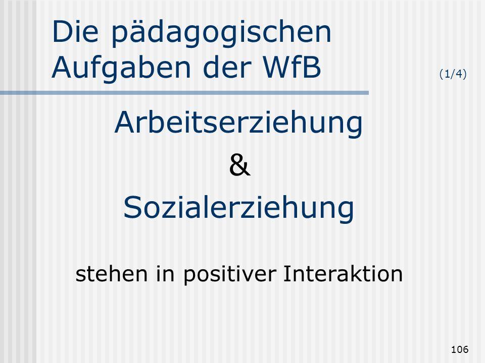 Die pädagogischen Aufgaben der WfB (1/4)