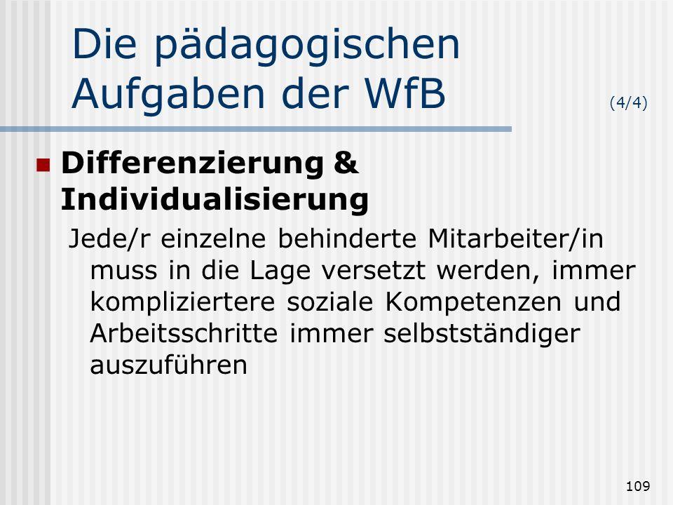 Die pädagogischen Aufgaben der WfB (4/4)