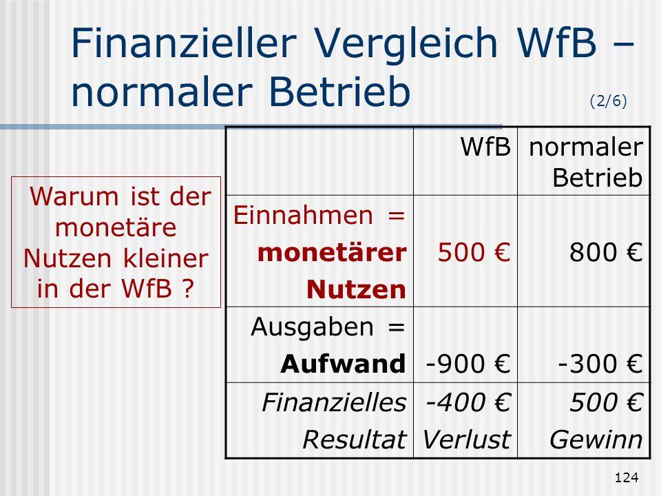 Finanzieller Vergleich WfB – normaler Betrieb (2/6)
