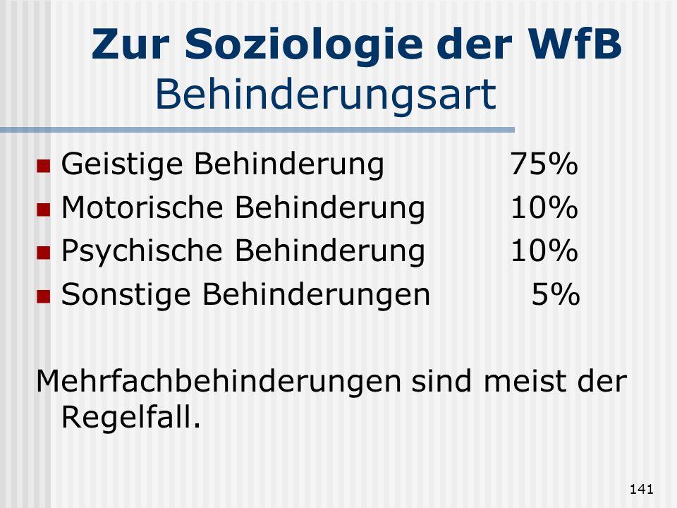 Zur Soziologie der WfB Behinderungsart