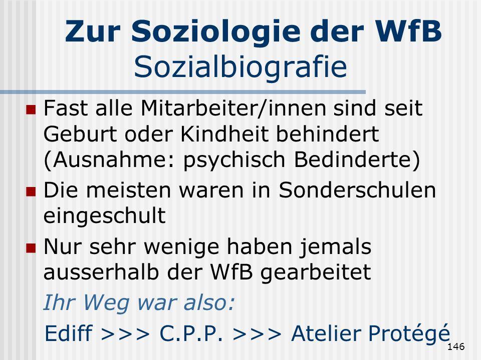 Zur Soziologie der WfB Sozialbiografie