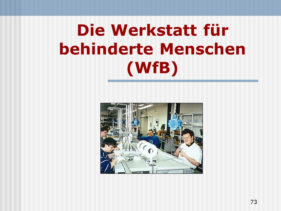 Die Werkstatt für behinderte Menschen (WfB)