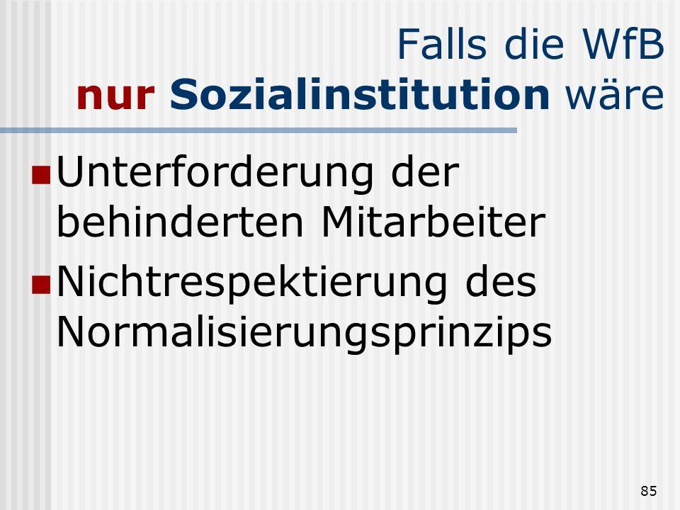 Falls die WfB nur Sozialinstitution wäre