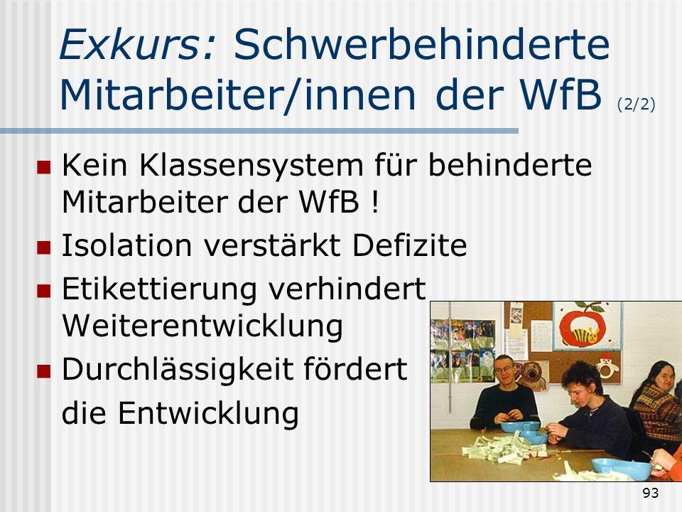 Exkurs: Schwerbehinderte Mitarbeiter/innen der WfB (2/2)