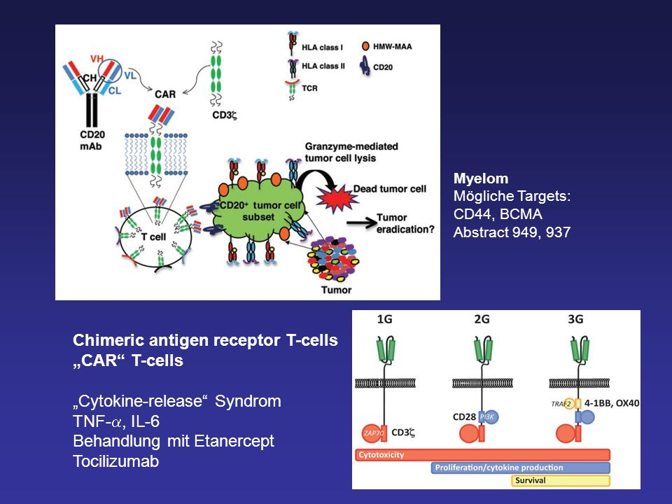 "Chimeric antigen receptor T-cells ""CAR T-cells"