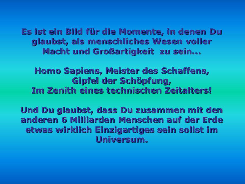 Homo Sapiens, Meister des Schaffens, Gipfel der Schöpfung,