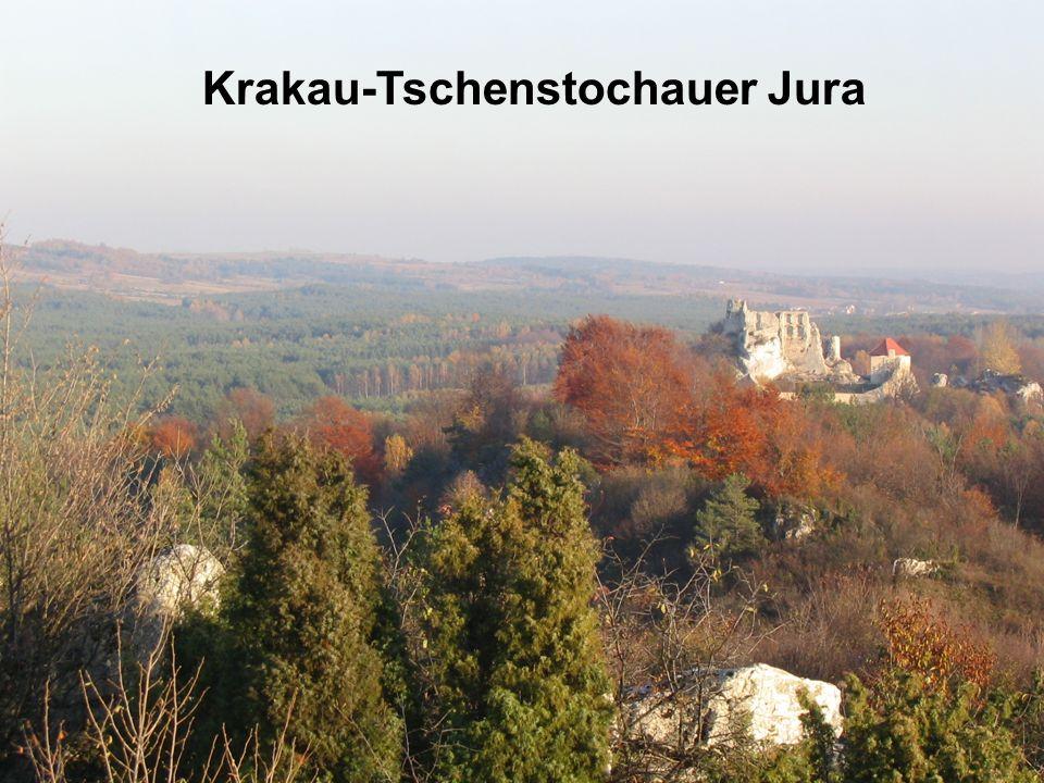 Krakau-Tschenstochauer Jura