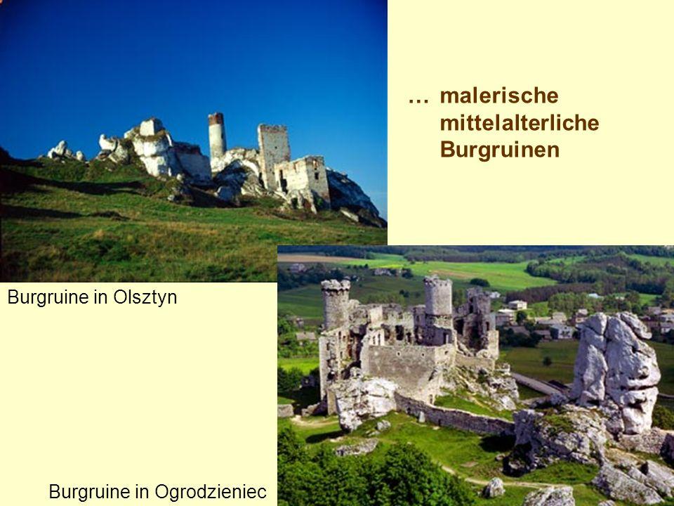 … malerische mittelalterliche Burgruinen