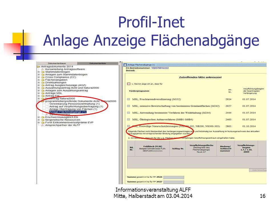 Profil-Inet Anlage Anzeige Flächenabgänge