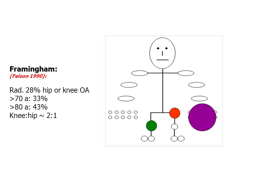 Framingham: Rad. 28% hip or knee OA >70 a: 33% >80 a: 43%