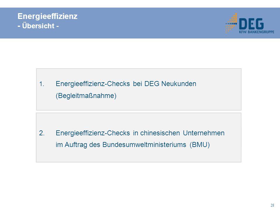 Energieeffizienz - Übersicht -