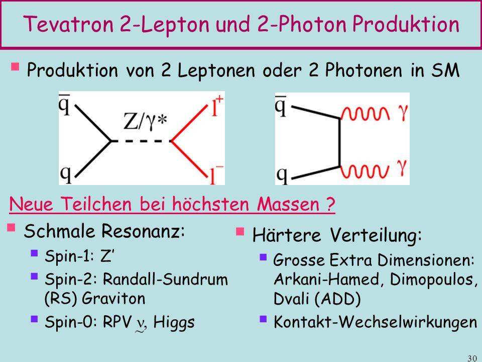 Tevatron 2-Lepton und 2-Photon Produktion