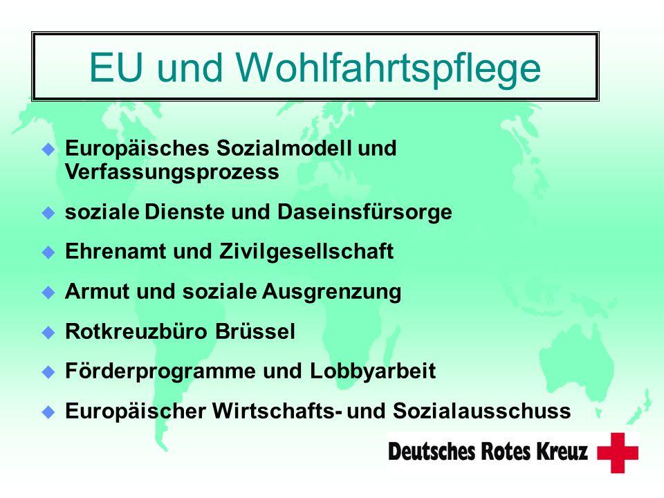 EU und Wohlfahrtspflege