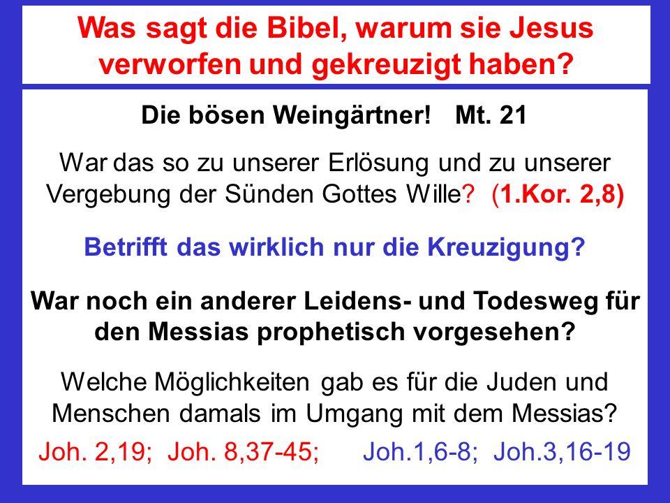 Was sagt die Bibel, warum sie Jesus verworfen und gekreuzigt haben