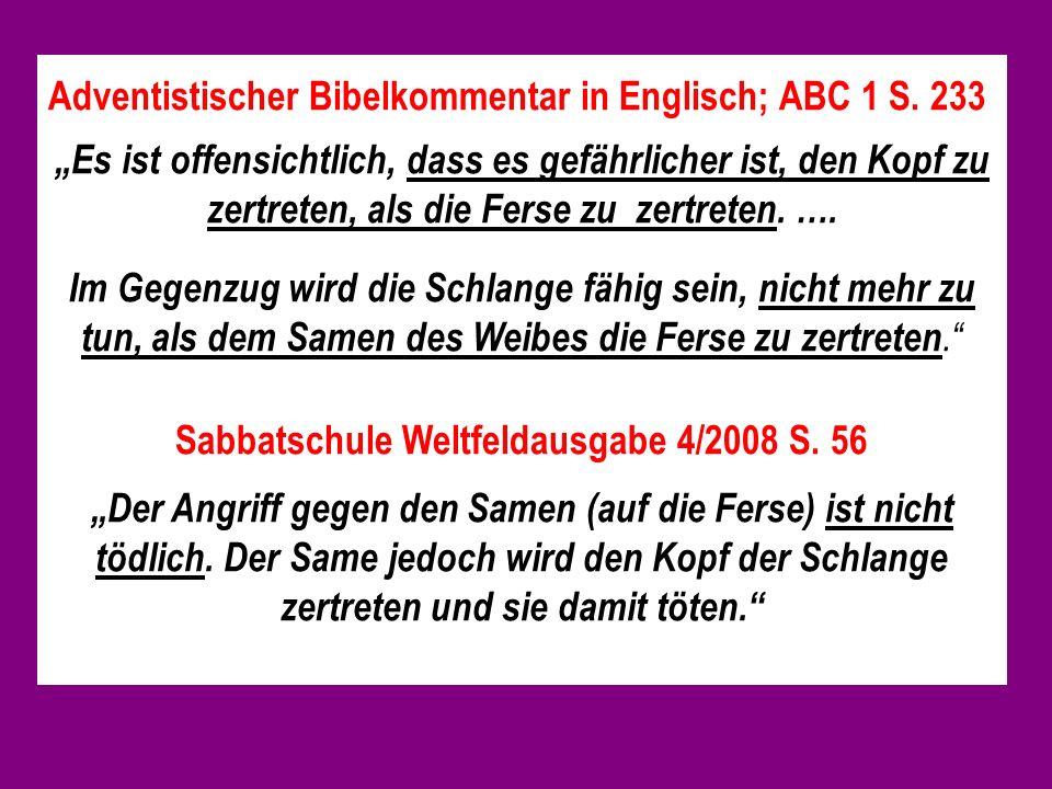 Sabbatschule Weltfeldausgabe 4/2008 S. 56