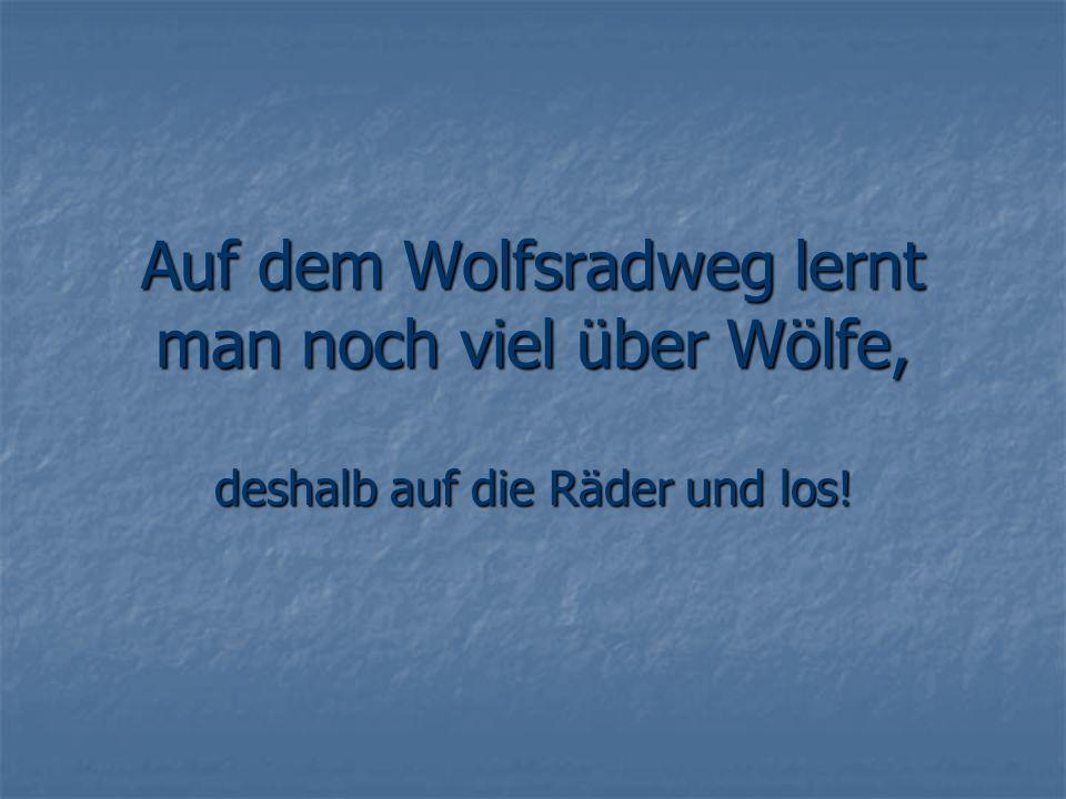 Auf dem Wolfsradweg lernt man noch viel über Wölfe,