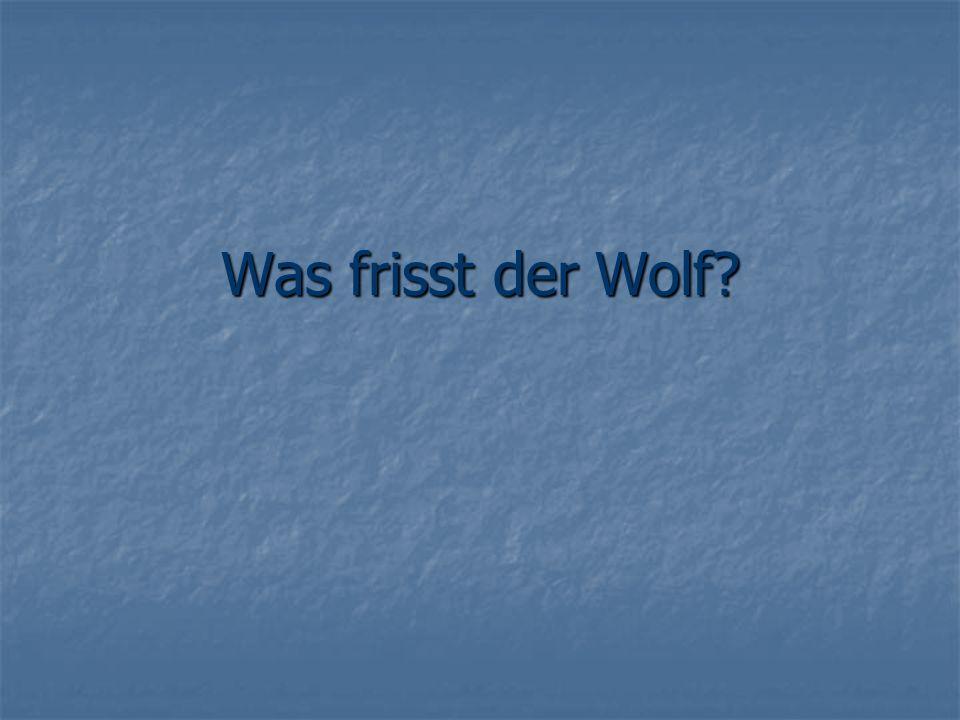 Was frisst der Wolf
