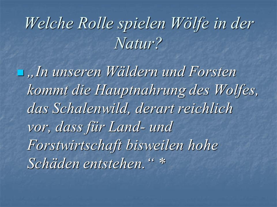 Welche Rolle spielen Wölfe in der Natur