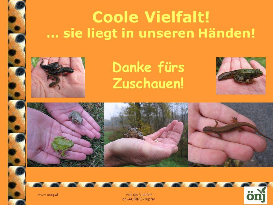 Coole Vielfalt! … sie liegt in unseren Händen!