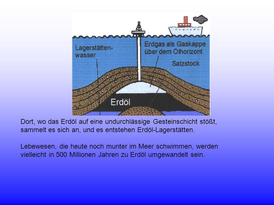 Dort, wo das Erdöl auf eine undurchlässige Gesteinschicht stößt,
